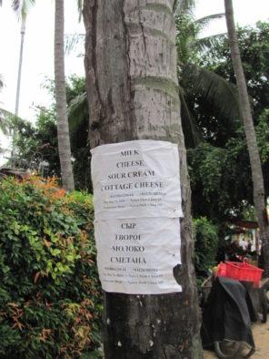 Объявление на пальме, Муйне, Вьетнам