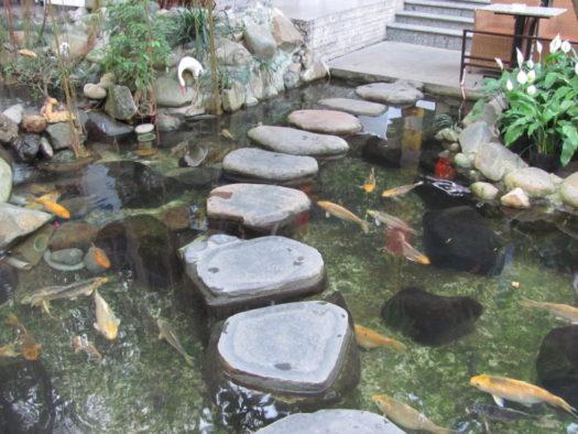 Антуражный пруд с рыбками в Flamengo