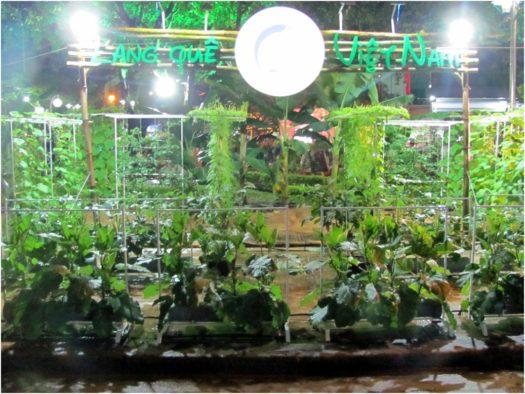 Выставка растений в парке Нячанга в Тет