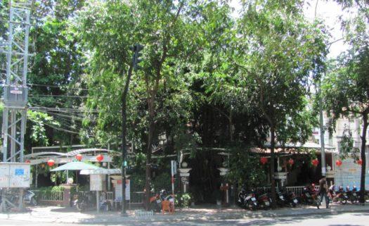 Gốc Tiên, кафе, Нячанг, Вьетнам