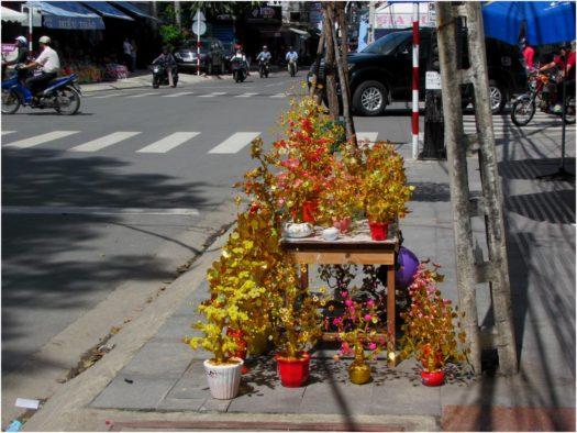 Золотые деревца для украшения дома к Тету, Нячанг, Вьетнам