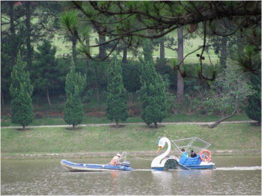 Катание на лебедях на озере Суан Хыонг