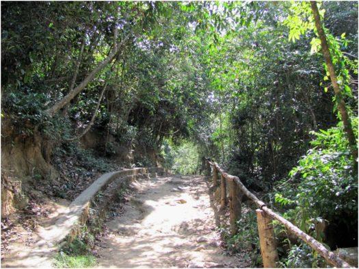 Путь к водопадам Ба Хо