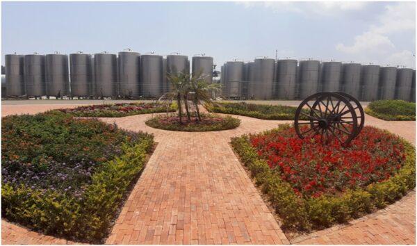 Винодельня Ladora Winery в Далате